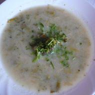 Polévka s řapíkatým celerem recept