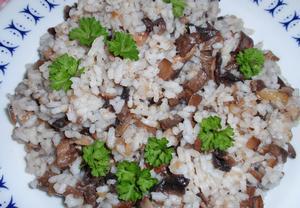 Hlíva s rýží