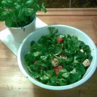 Salát Caprese v polníčkovém hnízdě recept