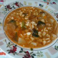 Zeleninová polévka s mletým masem a nočky recept