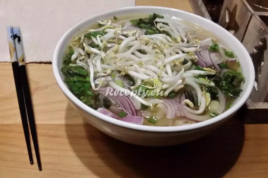 Vietnamská polévka Pho recept  polévky