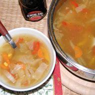 Ostrá čínská polévka recept