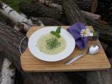 Polévka s řapíkatým celerem, bazalkou a smetanou recept ...