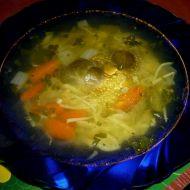 Pravá domácí králičí polévka recept