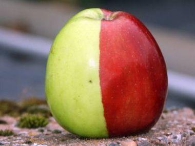 Jablková nutela