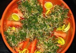 Krémový salát z brokolice, rajčat a vojtěšky