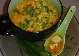 Drožďovo  mrkvová polévka s tofu recept