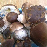 Zapečené houby recept