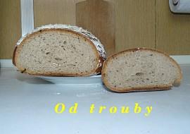 Kváskový chléb  verze 1.1 recept