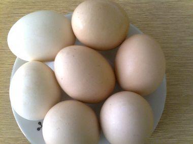 Jarní vejce