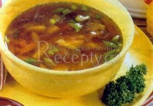 Jarní polévka