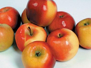 Jablečná pěna
