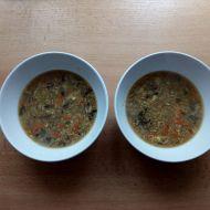 Pikantní polévka s kuřecím masem recept