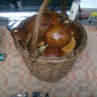 Pečené kuře s houbovou nádivkou recept