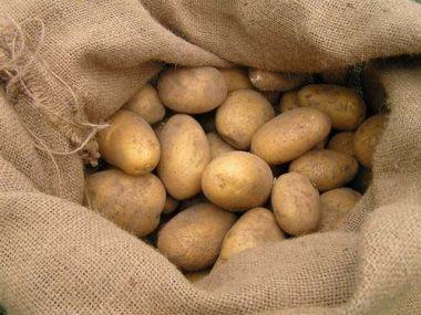 Poctivý bramborový salát