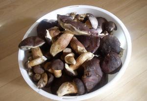 Zelňačka s houbami a uzeným