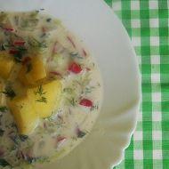 Veganská jarní polévka recept