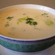 Bílá hovězí polévka se sýrem recept