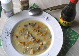 Rožnovsko  Homolská brambůrka recept