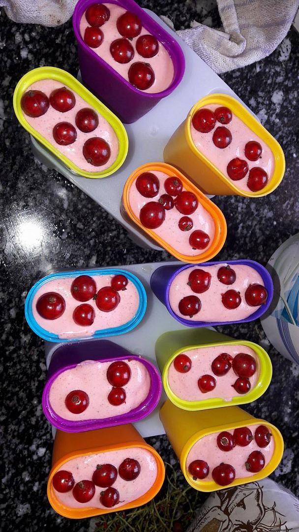 Rybízová zmrzlina s chia recept