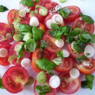 Rajčata s mozzarellou a bazalkou recept