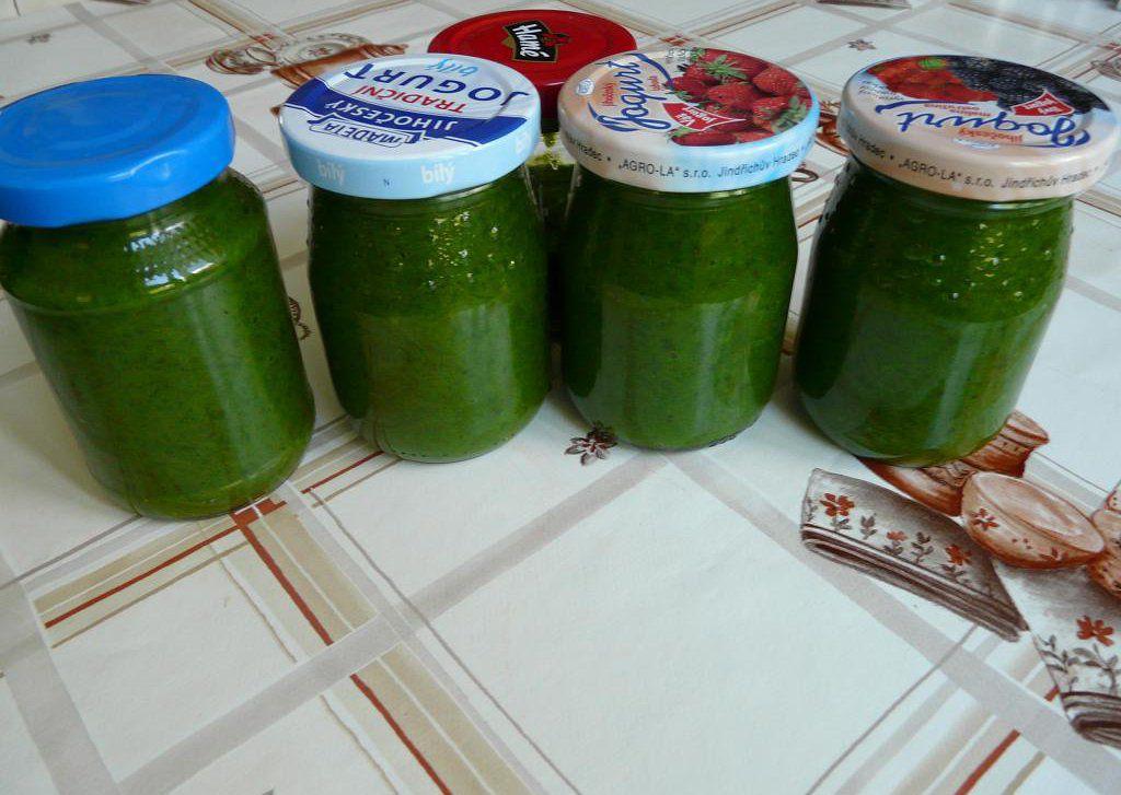 Pesto z medvědího česneku s parmezánem recept