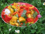 Salát z pečených paprik recept