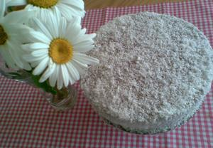 Kokosový dort s kakaovým krémem