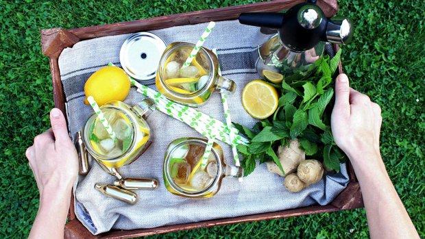 Zázvorová limonáda s citronem a mátou