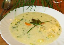 Šťovíková nebo šnytlíková polévka s mlékem recept