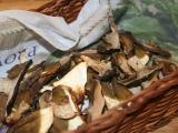 Sušené houby z trouby recept