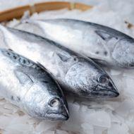 Plněná grilovaná makrela recept