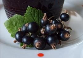 Marmeláda  rosol z černého rybízu  nevařená recept