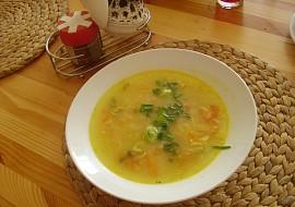 Nenáročná rychlá zeleninová polévka recept