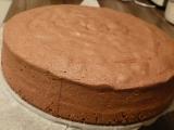 Kakaový olejový korpus na dort recept