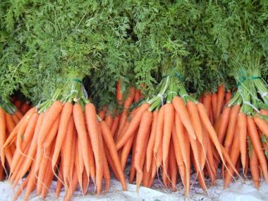 Křenový salát s mrkví