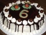 Vosí dort s čokoládovou polevou recept
