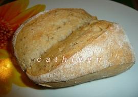 Pšenično  žitné dalamánky s omládkem recept