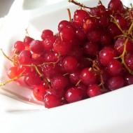 Domácí rybízové víno recept