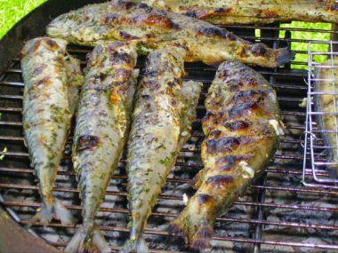 Pstruh na grilu recept (po mlynářsku)