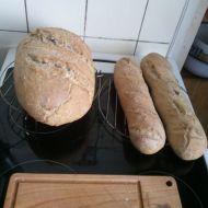 Domácí chléb z běžné trouby recept