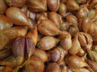 Pečené cibule s masovou náplní