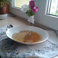 Rychlá vodová polévka recept