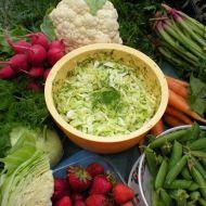 Křehký zelný salát od Jindřišky recept