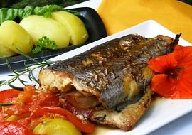 Mořská štika pečená s rajčaty, cuketou a rozmarýnem recept ...