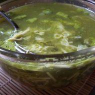 Nudlová špenátová polévka recept