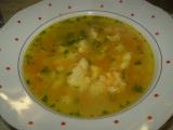 Polévka z rychlíku recept