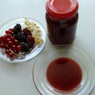Rybízová marmeládová směs recept