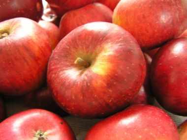 Jablka karamelová