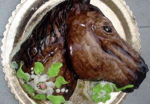 Dort Hlava koně